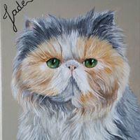 persan exotic shorthair peinture acrylique sur toile