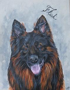 berger allemand, peinture acrylique sur toile
