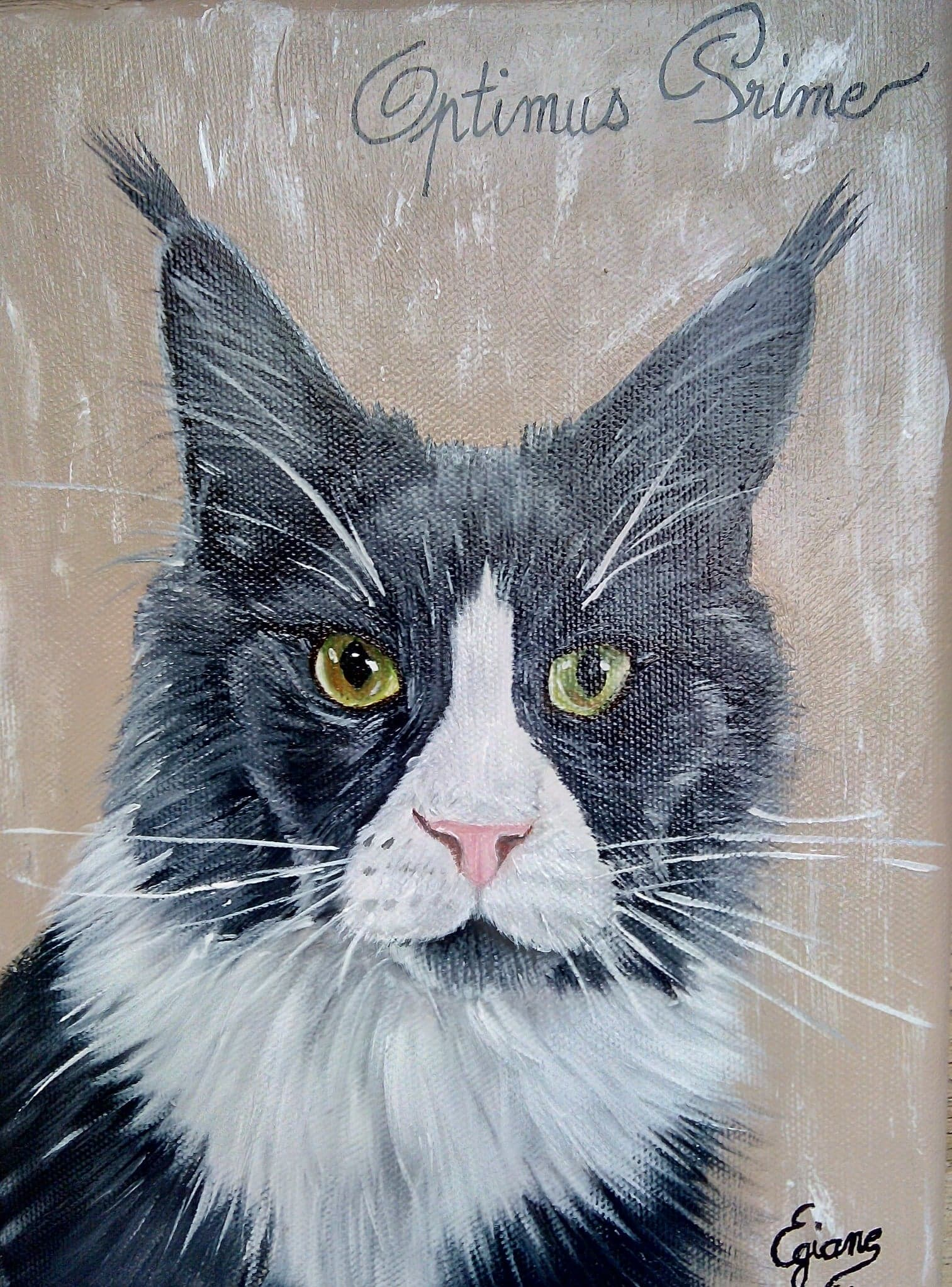 chat maincoon, peinture acrylique sur toile